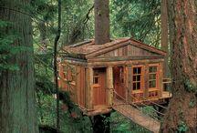 case sull' albero
