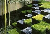 DOM - garden