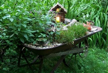 Garden Ornaments and lighting / Creat Zen in your garden by adding beautiful garden ornaments,garden lights and bird feeders.