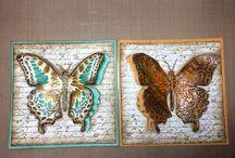 kaart vierkant met vlinder..