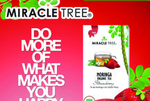 Be Happy with Miracle Tree / Do What Makes You Happy!  Enjoy our #organic #moringa teas today! Available on Amazon and online at www.miracletree.co!
