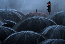 Shelter Me from the Rain, Wind, Sun & Storm / Umbrellas and Raincoats