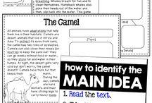 Reading Classroom - Information Standards