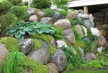 Garden - retaining wall