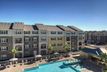 San Antonio Apartments / Come see what Elysian at Arden Park has to offer!