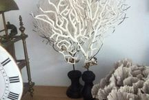 White coral 'gorgone' / White coral gorgone on stand for decoration.