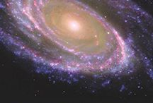 COSMOS   BEAUTY