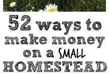 ~homesteading~