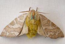 Textile butterflies and moths