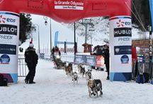 La Grande Odyssée 2015 / Découvrez  les étapes en Haute-Savoie et l'arrivée de La Grande Odyssée 2015 : une aventure féerique et spectaculaire !
