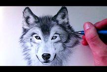 ур.рис.волк