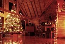 Christmas / by Jose Hernandez