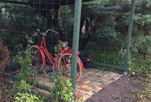 Cykelskjul