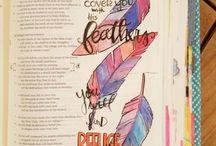 livres illustrations