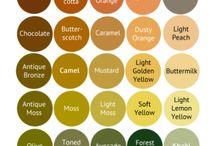colour analysis( warm)