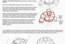 Dibujo: Anatomía