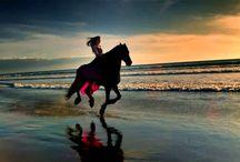 Sarah Brightman - This Love & Lyrics HD