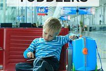 Organized Traveler