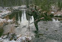 Metsästysmaisemia