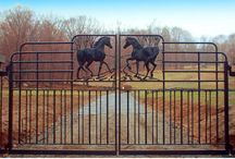Gates and Entryways / Metal gates, winding driveways, and more!