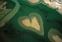 That looks like a Heart! / Images of the classic Heart shape found everywhere! / by Joseph