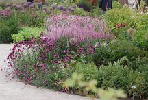 Inspirationen Garten