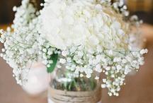 Blumen Vasen