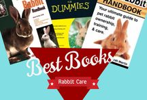 Wells Wabbits Bunny Farm / Buying a bunny, Rabbit Breeds, Best Rabbit Cages, Best Rabbit Care Books, Showing Rabbits, Rabbit Shows, How to Show a Rabbit, Rabbit Supply List
