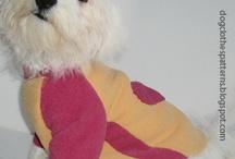 Cappottini e magliette cani