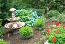 Residential Landscaping / Residential landscaping, design and build projects