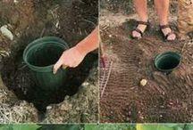 sposoby sadzenia i podlewania roslin
