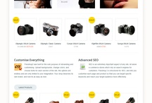 Responsive E-commerce WordPress Themes