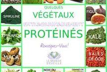 protéines vegetales