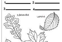 φύλλα φθινοπωρινά νηπιαγωγείο