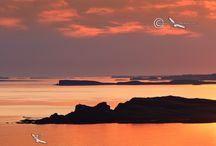 Isle of Mull / Landscape Photography of Scenic Isle of Mull