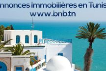 Annonces Immobilières en Tunisie