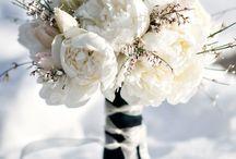Hajar Winter Wedding