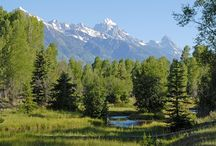 Our Current Vacant Land Listings / Spackmans and Associates active vacant land listings in the Jackson Hole, Wyoming area.