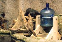 otter verrijking