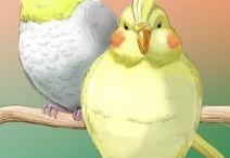 動物 / #動物 #カワイイ #鳥 #インコ #猫 #キャラクター