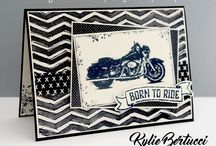 One Wild Ride Stampin Up