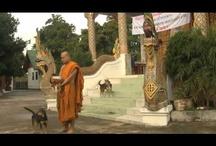 Travel-Thailand 2012