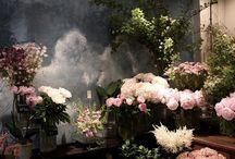 Флористы