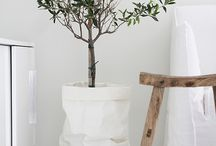 Art & olive tree decoration / Home Decoration inspired by olive tree