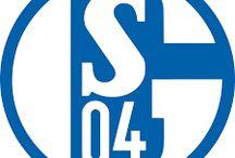 wolfsberger-ac-vs-schalke-04