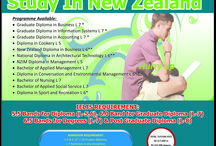 Study Abroad in New zealand / North tech college in new zealand