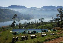 """Sri Lanka / Ein Sri Lanka Urlaub auf der tropischen Insel an der Südspitze von Indien ist geprägt von einer unglaublichen Vielseitigkeit. Das ehemalige Ceylon mit seiner Hauptstadt Colombo vereint in einem Sri Lanka Urlaub wunderschöne Sandstrände und majestätische Gebirgsgruppen mit faszinierenden Kulturstätten. Kaum ein Land ist so vielfältig wie Sri Lanka, zu Deutsch """"die strahlend schöne Insel""""."""