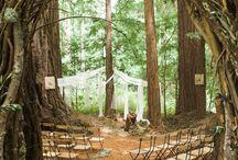 Boho Wedding Moodboard / Woodland / boho wedding ideas from locations to dresses to decor