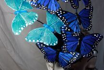 Papillons Butterflies