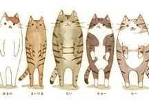 Cats / by Sunshine